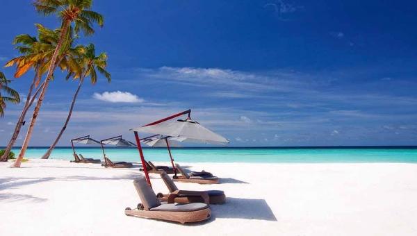 Beach Sunloungers