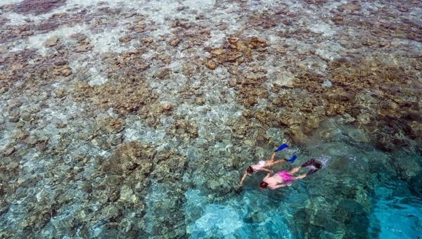 SNORKELLING AND WATERSPORTS