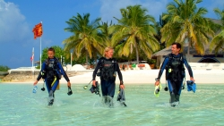 Nika Diving  Huse Reef