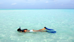 cocoaisland snorkeling