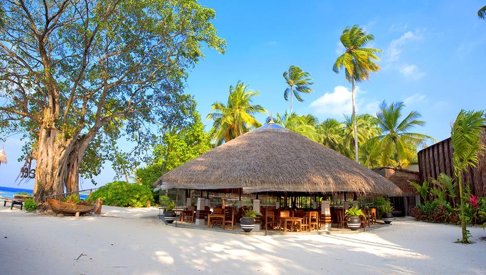 aaaVeee Natures Paradise Island