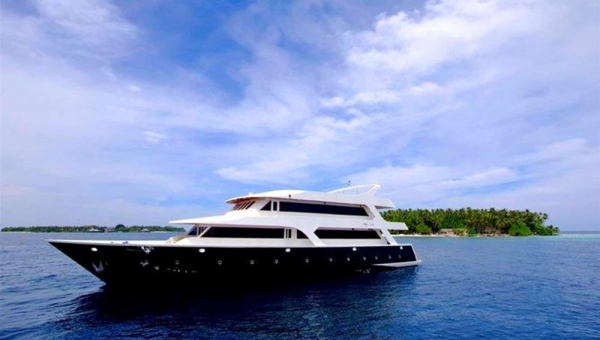 Handy Cruise Maldives