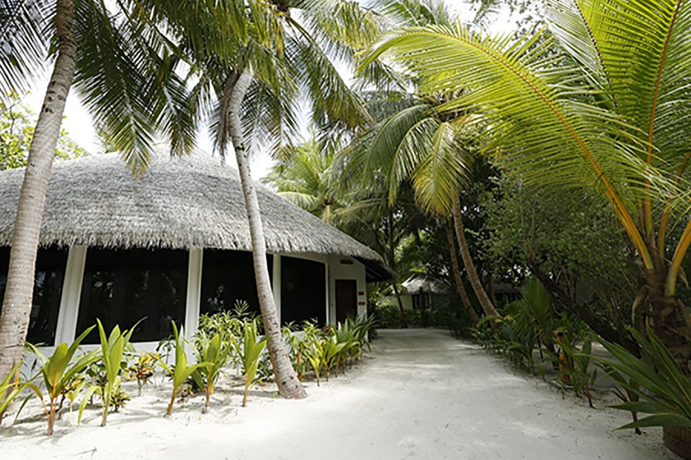 THE MALDIVIAN SUITE WITH POOL