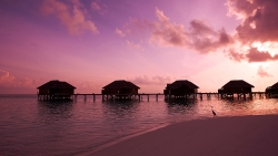 10% OFF ON HONEYMOON PACKAGE AT WATER VILLA